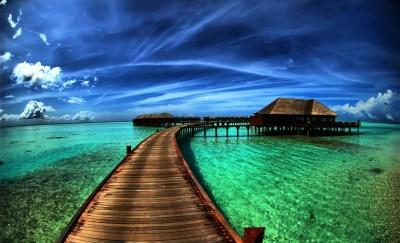Amazing Background Images ·①