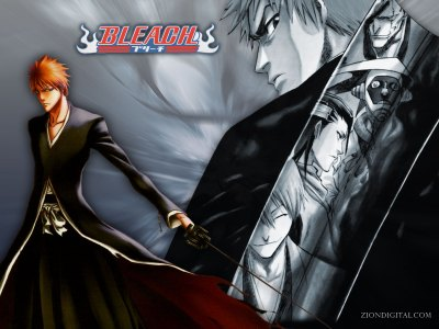 Bleach HD Wallpaper | Wallpup.com