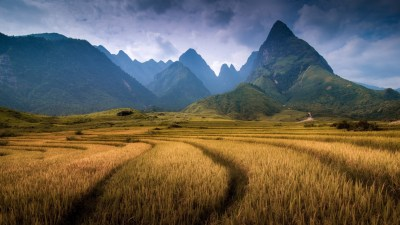 nature, Landscape, Mountain, Clouds, Vietnam, Field, Trees, Forest, Spikelets, Hill Wallpapers ...