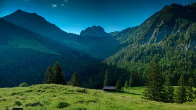 landscape, Nature, Valley, Trees, Pine Trees, Mountain, Forest, Sunlight, Field Wallpapers HD ...
