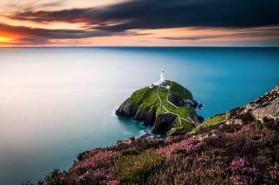 landscape, Wales, Lighthouse, Flowers, Coast, Sea, UK Wallpapers HD / Desktop and Mobile Backgrounds