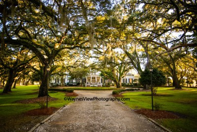 South Carolina Wedding Venues – Greenfield Plantation ...