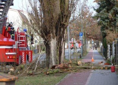 Sturm FABIENNE trifft Sonntagnacht auf Österreich mit Böen über 100 km/h