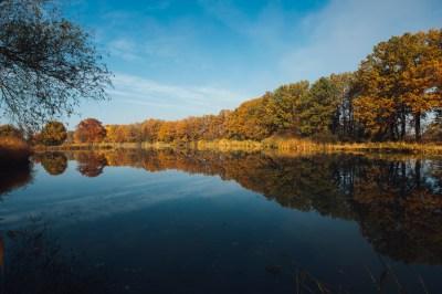 Coco as Marilyn Monroe widescreen wallpaper | Wide-Wallpapers.NET