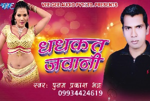 New Bhojpuri Album   10 Great Albums You Should Own The Bhojpuri language represents many words of Hind so many people can  understand the basic wordings  Whether it is about video or audio songs