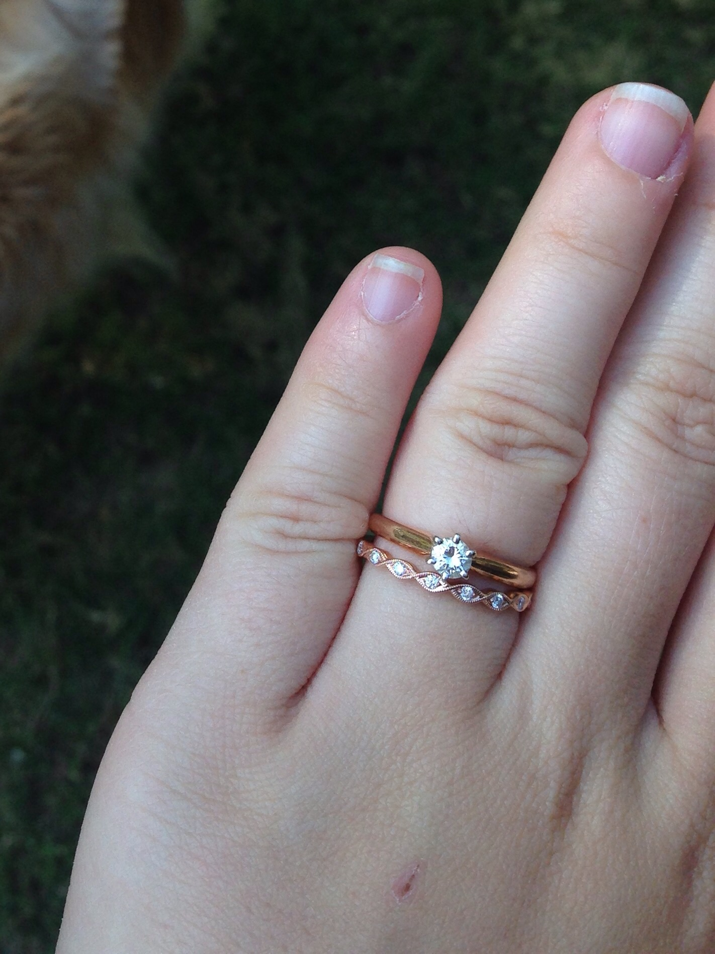 solitaire band what is too thin dainty wedding bands Post 6