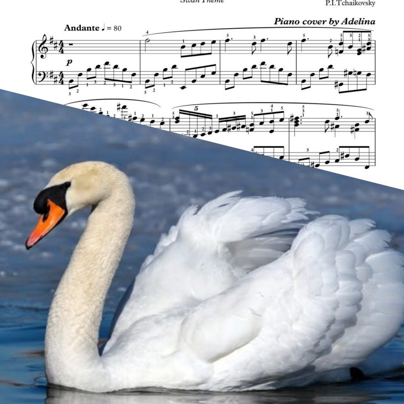 """Swan Lake"" – P.I.Tchaikovsky – Piano Sheet Music"
