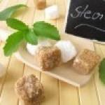 Cultivo de Stevia en el Huerto: Poda, Riego, Cosecha y más