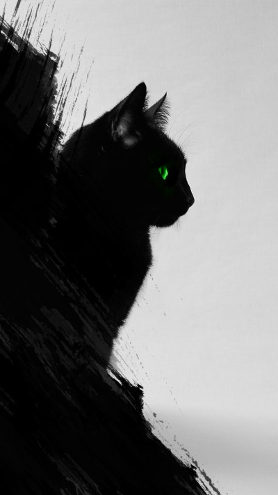 Black Cat iPhone Wallpaper HD