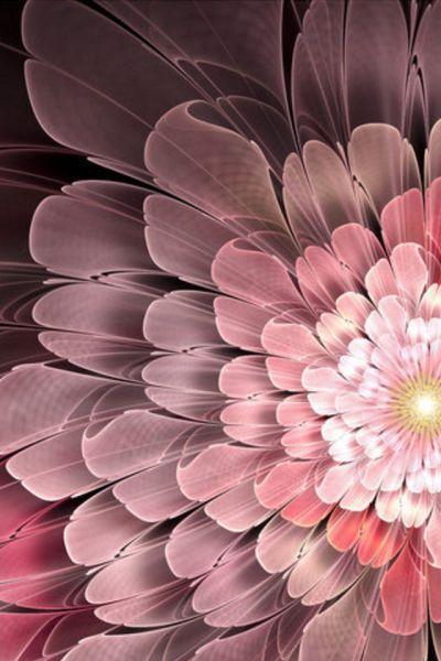 Abstract Flower iPhone Wallpaper HD
