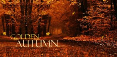 Golden Autumn Live Wallpaper free APK android app - Android Freeware