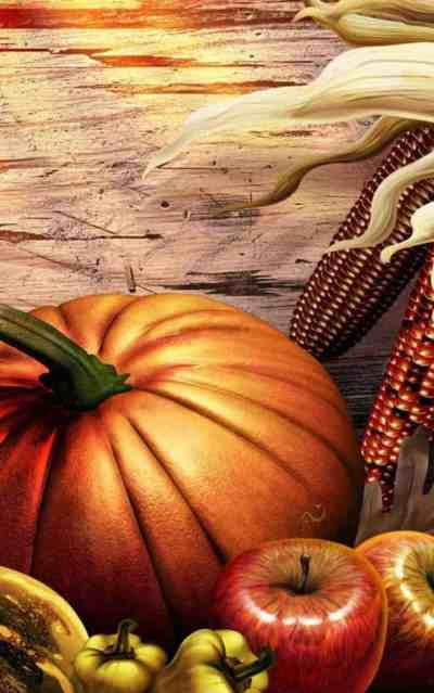 Best Android Apps — Thanksgiving Day — November 2017 ...