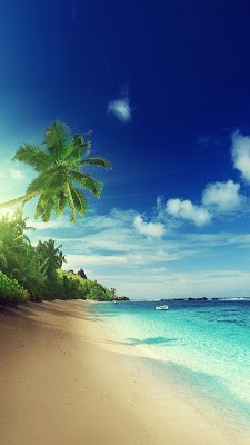 Beach Live Wallpaper APK Download for Android