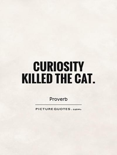35 Famous Curiosity Quotes and Sayings