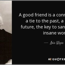 Top 25 Great Friendship Quotes of 107 a Z Quotes
