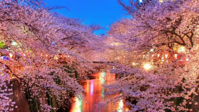Japan Wallpapers HD Backgrounds, Images, Pics, Photos Free Download - Baltana