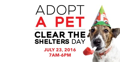 Clear the Shelters | City of Irvine