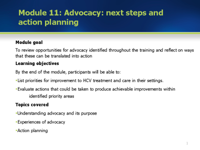 Module 11: Advocacy: Next steps and action planning