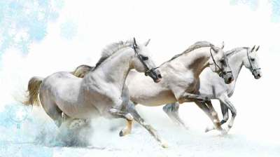 Vastu Shastra for Running Horse Painting - DecorChamp