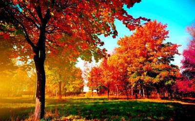 Autumn Wallpaper Examples for Your Desktop Background