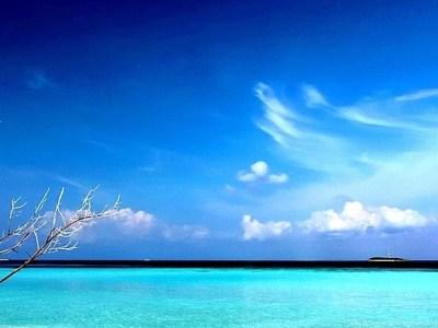 Hd beach wallpapers 1080p nature beach iphone 6 plus 1080x1920 wallpaper.jpg Desktop Background