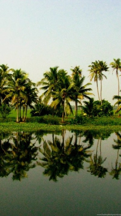 Kerala Nature Wallpapers Widescreen HD Wallpapers Desktop Background