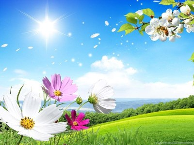 Spring Live Wallpapers Android Apps On Google Play Desktop Background