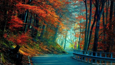 Full HD 1080p Autumn Wallpapers HD, Desktop Backgrounds 1920x1080 Desktop Background