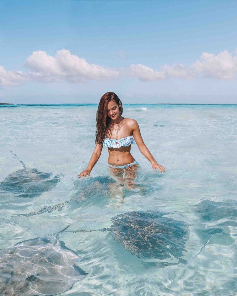 10 reasons to visit The Cayman Islands   book a vacation now  Stingray City  Grand Cayman 10 reasons to visit The Cayman Islands