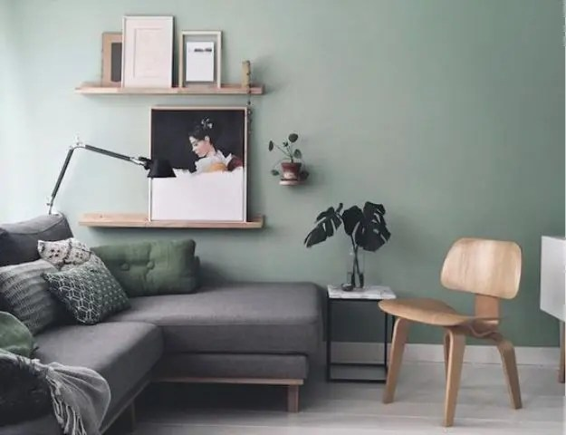 30 Green And Grey Living Room D    cor Ideas   DigsDigs dove grey room  a light green wall and green and grey upholstery