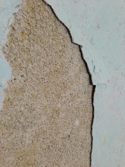 1960s house; state of walls after stripping wallpaper | DIYnot Forums