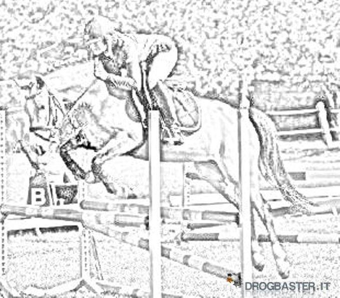 Cavallo immagini e disegni da stampare for Immagini di cavalli da stampare