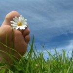 La Biología de los Pensamientos. Cómo vivir el presente