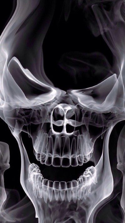 Skull X-ray Wallpaper - Free iPhone Wallpapers