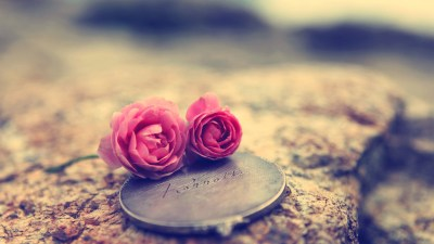 50 Romantic Love Wallpapers for you