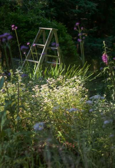 Secret Garden: At Home with Marnie on Cape Cod - Gardenista