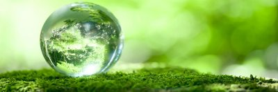 Groovy Green : Renewable Energy & Sustainable Living