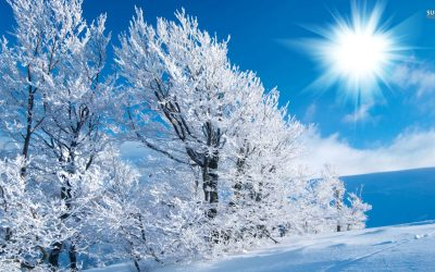 Winter Wide Wallpaper 1920×1080 | HD Wallpapers , HD Backgrounds,Tumblr Backgrounds, Images ...