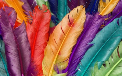 Colourful Wallpapers, Pictures, Images