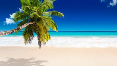 Tropical Beach Wallpapers, Pictures, Images