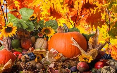 Thanksgiving Backgrounds, Pictures, Images