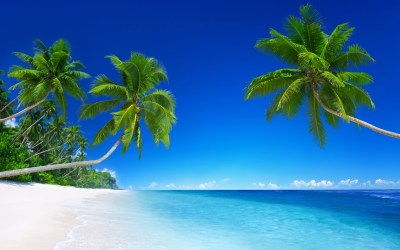 Tropical Beach Paradise 5K Wallpapers | HD Wallpapers | ID #18455