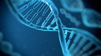 DNA Structure Wallpaper - 3D HD Wallpapers - HDwallpapers.net