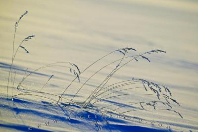 Abstract Winter Arts Background | Photo, Information