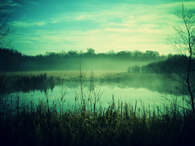 Misty Green Secluded Lake - HD Wallpapers