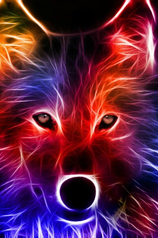 Light Effect Wolf - HD Wallpapers