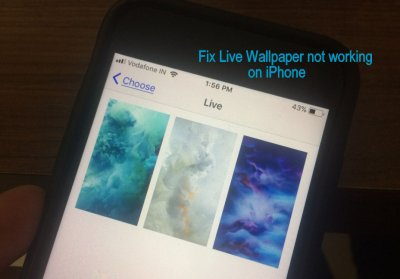 Fix Animated Wallpaper not working on iPhone X/8/8 Plus/ 7/ 7 Plus/ 6S+