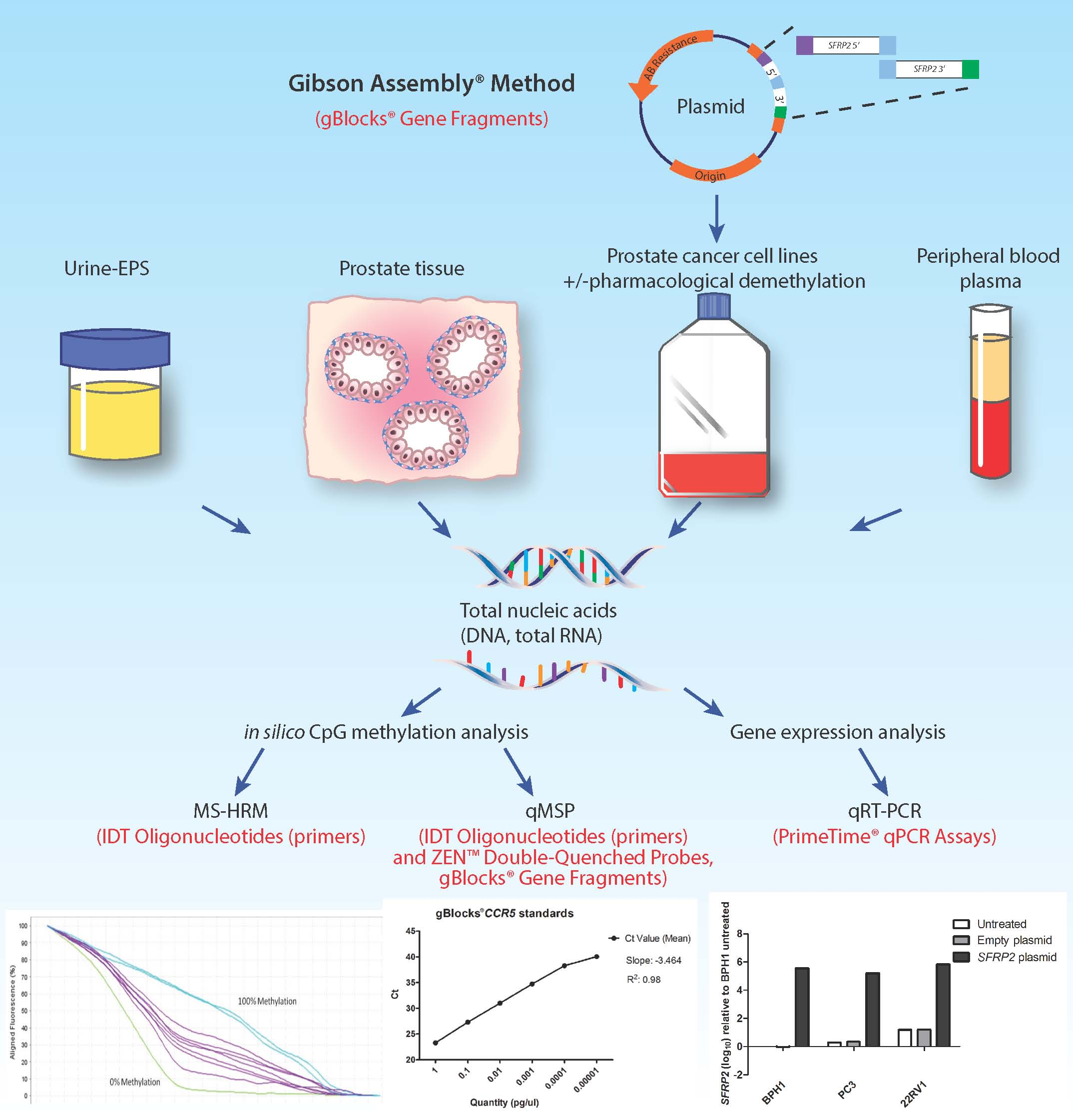 Epigenetic biomarkers for prostate cancer