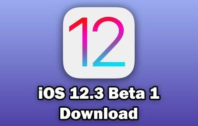 ios 13 beta 1 download ipsw