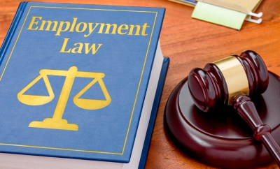 Comply with basic employment law   Business Law Donut